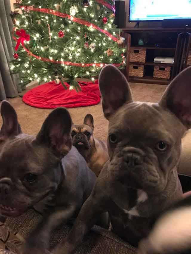 Mimi-and-Tucker-Christmas
